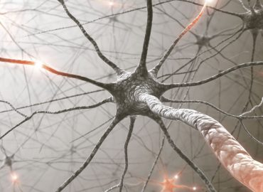 IPO Watch: Argenica Therapeutics developing drugs for brain recovery