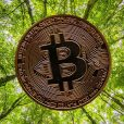 DC Two launches new vertical offering eco-friendly Bitcoin mining data centres