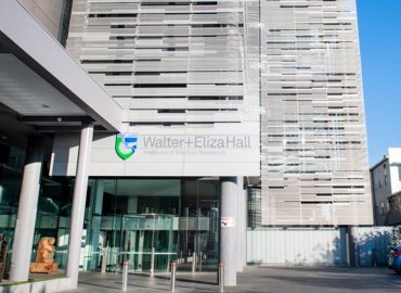 PharmAust partners with the Walter and Eliza Hall Institute to expand COVID-19 research