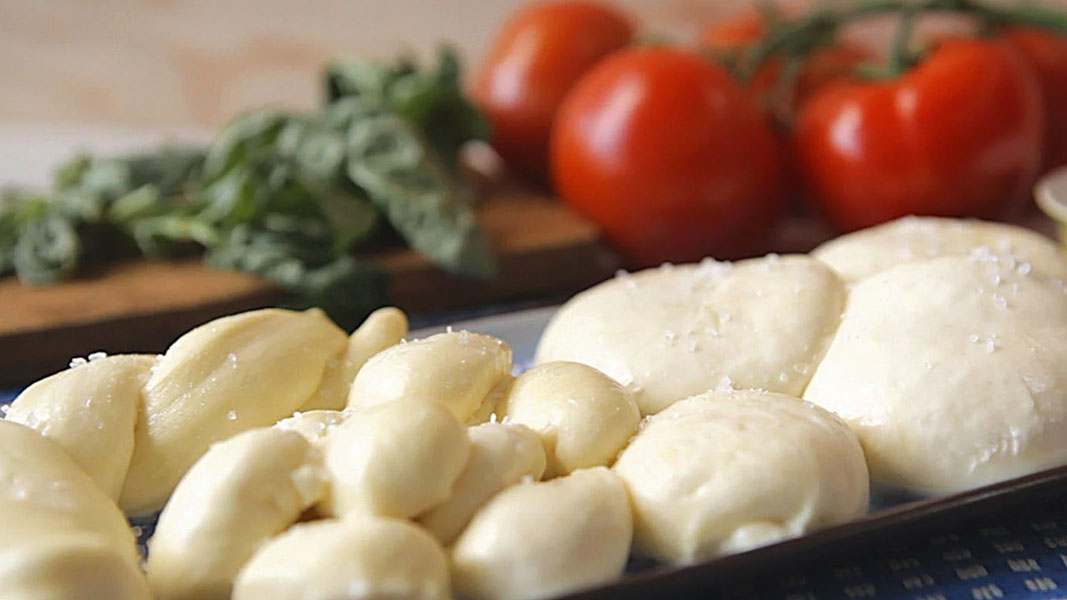 Beston lands the big cheese with $20 million mozzarella deal