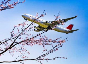 Flight Centre doubles down on travel outlook with expansion of corporate business to Japan