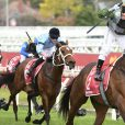 Incentivise puts Southern Queensland racing and breeding on the map as investors follow